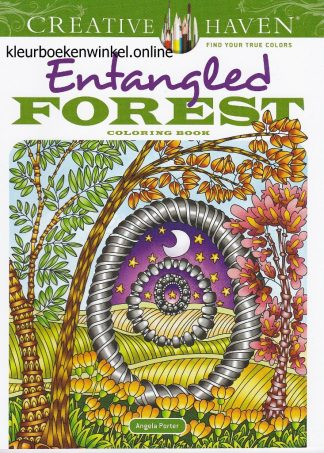 CH 226 entangled forest